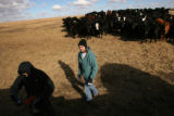 MJM049 Charlie Hartman (cq), 18, left, and his sister, Emily Hartman (cq), 15, feed cattle with...