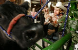 Pat Gabel of Bailey, CO gives the Champ a kiss Friday January 23, 2009. Chavez, a 1295 pound cross...
