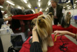 MJM838 Diane Hutson (cq), 24, of Columbia, South Carolina grooms her Yorkshire Terrier, Dodger...