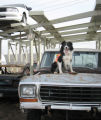 Koert, a rescue dog,  sits on the front of a truck at a Denver impound lot after a successful...