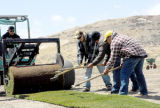 From left, Antonio Medina, David Medina, Joel Medina and Enrique Macias of Green Valley Turf Co....
