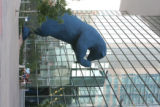 The Blue Bear sculpture at the Colorado Convention Center. Photos of buildings that Mary Chandler...