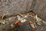 1807  A discarded syringe lies in a corner of the Greek Amphitheater in Civic Center Park in...