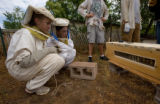 (Boulder, Colorado, Aug. 7, 2008) Lizzi Streeter and Emily McNellan take a look at the beehive...
