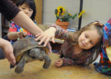 Ralston Elementary student, Hailey Fallander, pets a visiting tortose during science day at the...