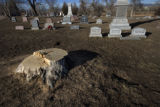 The final marker for a recently chopped tree mixes with other markers at Riverside Cemetery in...