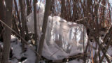 A plastic bag neat to  the S. Platte River near downtown Wednesday February 11,2009. Sen. Jennifer...