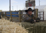 Brad Hawe pulls a bail of hay to feed his Bulls during the Western Stock Show in Denver, CO on...