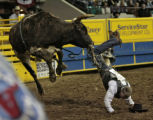Clance Mummert, Bellevue, ID, falls of Smokiin Aces, during the Bull Riding event, Thursday...