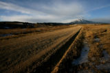 (Easement 2) A dirt road leads to the Spanish Peaks, Wednesday morning, January 30, 2008, Huerfano...