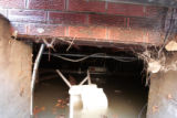 A frustrated Kyle Painter (cq) checks out the water level in his crawl space at his Lakewood home...
