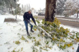 Matt Szumilas (cq)  drags a tree branck off the sidewalk along Wilcox Street in Castle Rock during...