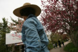 MJM1040 Artist, Carolyn Miller (cq), center, paints blossoming crabapple trees Tuesday 04/29/08 at...