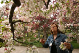 MJM858 Volunteer, Irene Shepard (cq) clips a sample of a Japanese Flowering Crabapple tree at the...