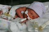 Giovanni Stanislao, 1-day-old son of Wendy and Brett Stanislao (cq) on November 18, 2005, at...