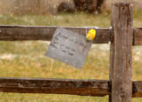 A sign and flower was placed  near the family home of Aarone Thompson early Thursday morning....