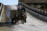 Ranch hand Jeff Woods, left, and Chris Jones deliver hay for the bulls with the help of a pair of...