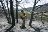 Brad LeCompte (cq) with the Cheyenne River fire crew checks out trees for widow-makers as he cold...