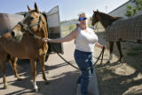 Mary Rucker (cq) of Lakewood leads a horse from a trailer into the stables at the Jefferson County...