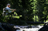 Spense Havlick (cq), 70, of Boulder flyfishes in a mountain stream in the Indian Peaks Wilderness...