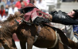 Chad Mask, Amarillo, Texas, gets tossed while competing in the bareback bronc at the Cheyenne...
