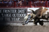 Cal Reo Peterson, Parade, South Dakota, gets gored by a bull after competing in the bull riding...