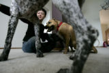 Stephanie Scott sits with her dogs Pippin, top, Moose, bottom-center and Riely Roo, right-center...