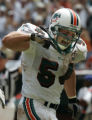 JPM1096  Miami Dolphins #54-Zach Thomas reacts to stopping Denver Broncos runningback Tatum Bell...
