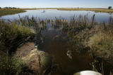 On Sept 30, 2005, in Iliff, a field still holds water from an earlier rain.  This pond drains into...