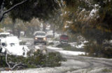 A driver moves carefully around tree damage caused by the heavy snowstorm on Monday, October 10,...