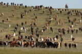 Cheyenne, Wy., photo taken July 18,2004-  Jordan Hirsig(top of fram on horseback) ,12, Cheyenne,...