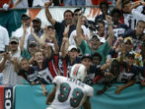 Dolphins fans cheer as Jason taylor goes into the end zone to score on a fumble recovery on the...