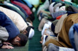 [Denver, CO - Shot on: 11/9/04] Muslims bow as they partake in one of their five daily prayer...