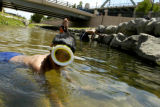 Eric Mu–oz cools off with his friends in the Cherry Creek near Confluence Park on Tuesday, June 8,...