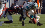 [Denver, CO]--Lenny Walls hits Jake Delhomme as he bobbles the ball in the third quarter. ...