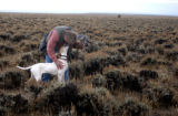 (Sweetwater County, Wyoming., October 4, 2004) Steve Chindgren  during a Sage Grouse hunt with the...