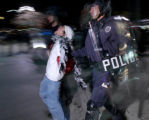 (BOULDER, October 31, 2004)  Police officers carry a person to a police van after a confrontation...