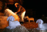 Assistant Cindy Connor (cq), of Faith Bible Chapel, arranges the baby Jesus in the manger of their...