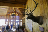 A donated mounted Elk head greets lunchtime visitors at Two Elk Lodge in the back bowls of Vail...