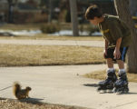 Kadin Rivas, 9 years old, stops to look at a squirrel while roller blading in his shorts at...
