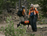 Members of the Larimer County Search and Rescue (who refused to give their names) along with...