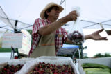 Thomas Cameron (cq) of Palisade sells a pound of cherries at Denver's new weekly Farmer's Market...