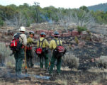 david pressgrove/craig daily press Members of the Black Cat Wildland Fire Suppression Unit from...