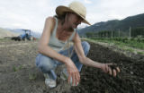 Sheila Manzagol (cq) checks out the moisture content of the soil at the Shining Mountain Herbs...