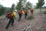 The Chief Mountain  Hotshot crew from Browning, Montana works the Mato Vega Fire at an elevation...
