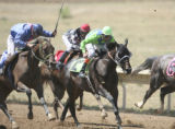 Jockey Carl Kutz (cq) (in green) rides number 12 Java Queen at Arapahoe Park in Aurora on Monday...
