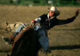 Sam Stuart (cq), of Vale, SD, tries to hold on in the bareback riding competition at the Flying...