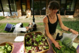 Jill Jacob (cq), of Lone Hawk Farm, bags up some organic lettuce for a customer at the Boulder...