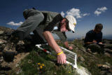 Bill Bowman, cq, Director of the University of Colorado Mountain Research Station and John...
