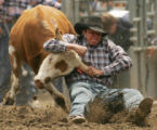 Chance Honey brings down a steer during the steer wrestling competition at the Colorado State High...